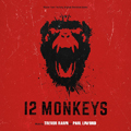 CD: 12 Monkeys (2015)
