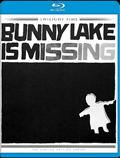 BunnyLakeIsMissing_BR