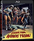 BR: Escape from Women's Prison / Le evase – Storie di sesso e di violenze / Violez les otages (1978)